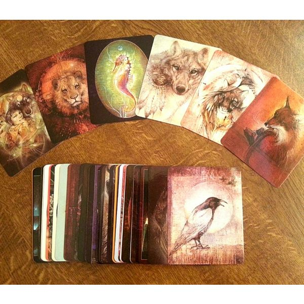 Animal Spirits Knowledge Cards