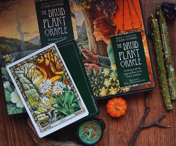 Druid Plant Oracle