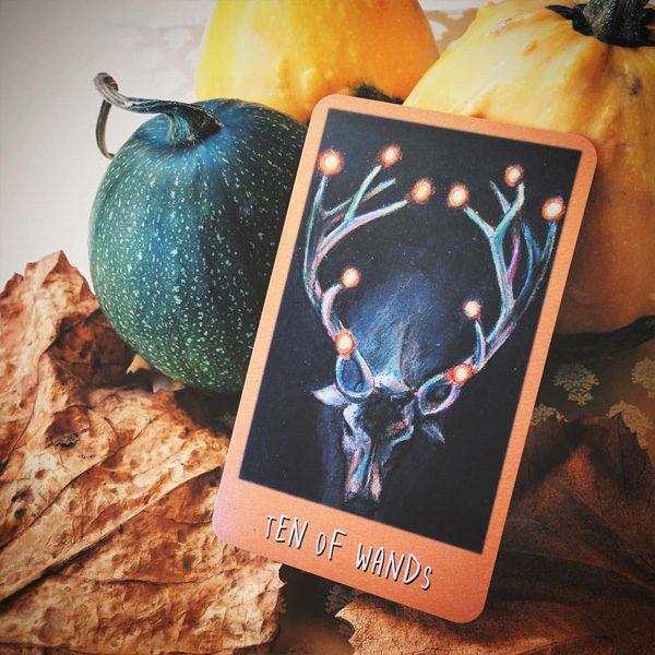 Raven's Prophecy Tarot