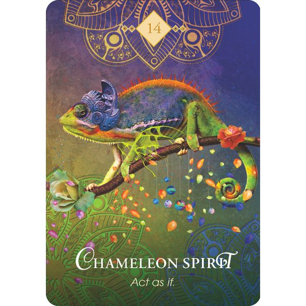 Spirit Animal Oracle