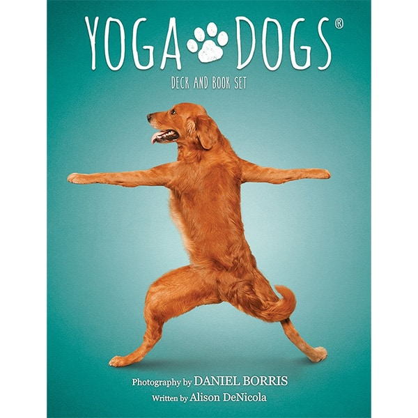 Yoga Dogs Oracle