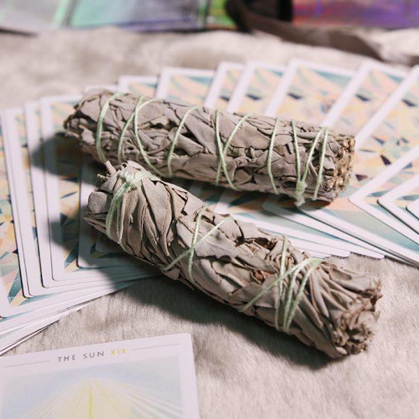 Xô Thơm Trắng (White Sage) - Set 02 bó 12-15 cm